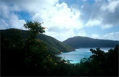 Enjoy luscious greenery and beautiful scenery when you take a walk among the wildlife at Guana Island. #honeymoon #Caribbean