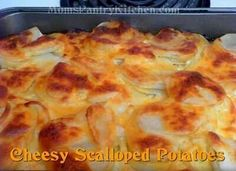 chessy scallop pot