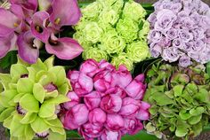 Google Image Result for http://www.hauteliving.com/wp-content/uploads/2010/05/English-Garden.jpg