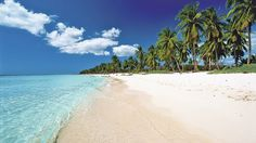 Trade snow for sand this winter. Paradise awaits you at Dreams Punta Cana Resort & Spa!