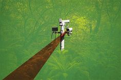 Privacidade digital (Foto: DPA/Picture Alliance via Getty Images / Arte:GQ)    São 7h da manhã de 2045. Seu eu do futuro acorda com uma notificação: a operadora de saúde suspeita, por meio de uma série de postagens no Instagram e acesso a dados genéticos, que seus hábitos alimentares e com o álcool, além de histórico familiar, te tornam candidato potencial a problemas no fígado. Por isso, seu plano deve Gq, Digital Foto, Tie Clip, Posts, Diy Dog, Tecnologia, Photos