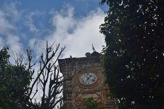 Reloj de huejutla de reyes Hidalgo antiguo