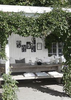 jessica154blogoutdoor living … go green!