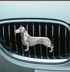 Doxie grill
