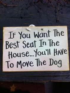 Move the #dog #pet if you want the best seat in the house