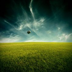 When your head takes flight by theflickerees.deviantart.com on @deviantART