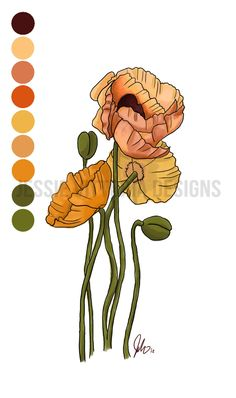 Poppies Tattoo | Jessie Vittoria Graphics