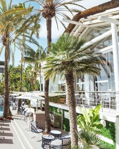 Are you ready to lunch amongst the palm trees? ⠀⠀⠀⠀⠀⠀ Every corner of the Sea Grill Restaurant restaurant is a piece of paradise, allowing you to sit back, indulge in the freshest food, whilst taking in the beautiful surroundings. Take joy in the coastal charm and gastronomical excellence this weekend at Puente Romano, Marbella. Timber Battens, Timber Roof, Timber Beams, Outside Pool, Pressure Treated Timber, Restaurant Restaurant, Timber Structure, Leading Hotels, Stunning View