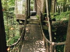 Go from room to room with a tree house rope bridge --> http://www.hgtvgardens.com/photos/decorating-photos/the-high-life-a-charming-city-treehouse#?soc=pinterest