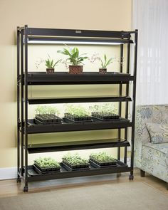 This ultra-bright three-tier plant stand with integrated LED grow lights is simply the BEST for indoor gardening. Each tier has three full-spectrum LED bulbs.