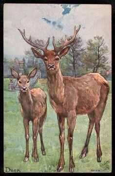 Bambi 3, Deer Illustration, Illustrations, Animals Images, Digi Stamps, Sloth, Vintage Prints, Mammals, Moose Art