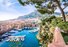 #Fontvieille I took a side trip to Monaco one day while out exploring the area, and had about a half hour to run around before I had to go pick up my kids from school. I showed up to this vantage point drenched in sweat but had to take a moment and enjoy one of the quintessential views of the Riviera, the Port de Fontvieille on Monaco's western edge. Thanks for posing, seagull! #visitmonaco by kestanocaravan from #Montecarlo #Monaco