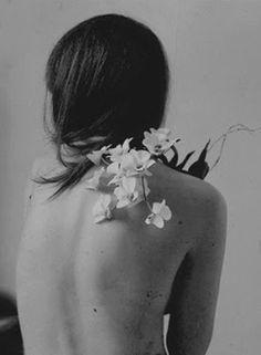O Perfume:    As Rosas De Ispaã  As rosas de Ispaã na bainha...