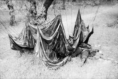 German paratrooper lies dead, his parachute still hanging from a Cretan olive tree. He was cut down before he even had time to unharness himself, most likely cut down by Cretan farmers fighting with 19th century rifles, axes, and knives. May 1941.