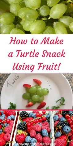 How to Make a Turtle Snack Using Fruit healthy five a day ideas! I thought it would be fun to experiment with some fruit and create some cute turtles of our own. When I was a kid I actually had a tortoise. Our cat found him, hibernating in the mud at the back of the garden when we moved house. We called him Thomas.