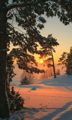 Amazing Sunrise in the Winter