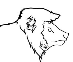 Colouring page of Hamadyras Baboon Mammal by JohnsIllustrations, $1.38