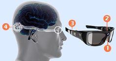 Sistema de visión biónico podría hacer que invidentes vean, incluso si no tienenojos