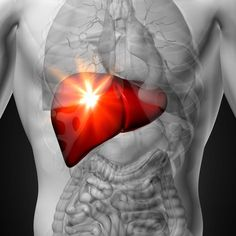 Do you have high liver enzymes or a fatty liver? If your doctor delivers news of high liver enzymes or a fatty liver, make sure you understand what that means. Fatty Liver Diet, Healthy Liver, High Liver Enzymes, Liver Disease Treatment, Milk Thistle Benefits, Liver Detox Supplements, Detox Your Liver, Liver Cleanse, Liver Failure