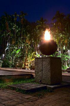 lotus pond dhara dhevi chiang mai thailand