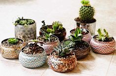 Instead of throwing them out, reuse your decorative Voluspa candle containers in these trendy ways, from succulent pots to makeup holders. Voluspa Candles, Tin Candles, Scented Candles, Succulent Pots, Succulents, Planter Pots, Succulent Arrangements, Recycled Jars, Floating Candle Centerpieces