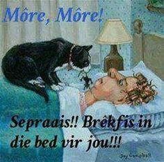 Sepraais:-)
