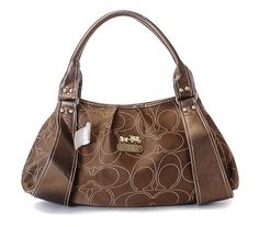 I actually like this Coach purse