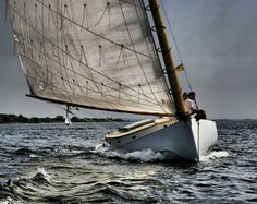 I LOVE sail boats!   I am going to set a goal to not only learn how to sail, but own a sail boat.  :)