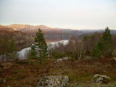 Langamyr med Viglandsvatnet i bakgrunnen