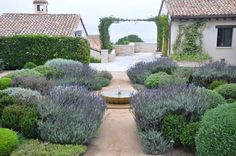 Southern california Coast. Natural/formal design by Debby Nevins.