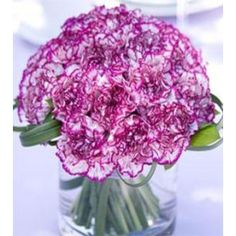 Carnations flowers for Birthday. Send these precious one dozen of Purple Carnations in vase to your mother. Beautiful Flower Arrangements, Wedding Arrangements, Floral Arrangements, Beautiful Flowers, Carnation Centerpieces, Floral Centerpieces, Wedding Centerpieces, Wedding Table, Centerpiece Ideas