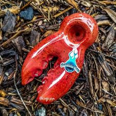 Chameleon Glass - Lobster Claw Glass Pipe Available on our online headshop Price: click the link in bio Free USA Shipping KINGS-PIPE. Glass Smoking Pipes, Glass Water Pipes, Weed Pipes, Pipes And Bongs, Awesome Stuff, Funny Stuff, Smoking Pieces, Bongs Online, Wooden Pipe