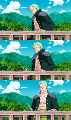 Zoro on Special Episode of Luffy- Hand Island Roronoa Zoro, Zoro Nami, Zoro One Piece, One Piece Anime, Real Anime, Fairy Tail Love, One Piece Images, Handsome Anime, Manga Characters