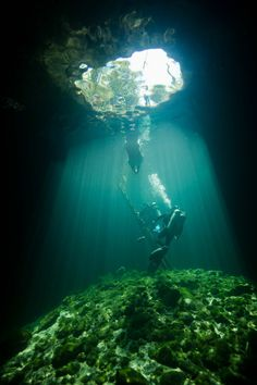 The Pit - One of many Cenotes around Tulum. Even in cloudy days the shaft of light shining through the access hole is fascinating. Thanks to the folks at Xilbalaba Dive Center for their guidance.
