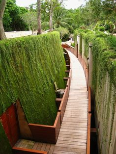 enochliew:    Four Seasons Resort Bali at Sayan  The resort's 18 suites are reached by teak walkways flanked by moss-covered walls.