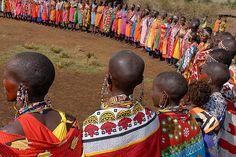 The Masai ladies entertain with song and dance near the Masai Mara, Kenya.