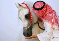 Bedouin's people are horse's people.