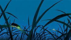Grave of the Fireflies, Studio Ghibli, Isao Takahata, gif Hotaru No Haka, Satoshi Kon, Grave Of The Fireflies, Japanese Animated Movies, Purple Cow, Emotional Photography, Kyoto Animation, Ghibli Movies, Gifs
