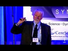 Brain Therapy and PTSD with Jim Knipe PhD: 2015 IDA Brain IDEAS Symposium - YouTube