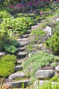 Escaleras de piedra subiendo una pequeña colina en un jardín de rocas perenne.