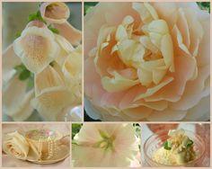 blog+311-756971.jpg (1600×1280)