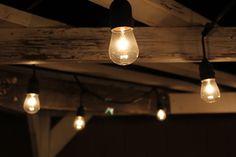 #breannenicolephotography #backyardlights