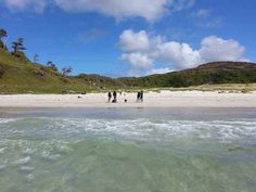 Calgary Bay, in Mull: the Scottish coastline can look almost Caribbean in the sunshine – though the water is usually a lot chillier. Image by James Smart / Lonely Planet.