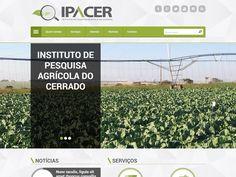 Website IPACER - Instituto Agrícola do Cerrado. Agência parceira: PubliA.