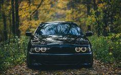 BMW M5, E39, forest, offroad, black m5, bmw