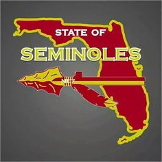 State of Noles