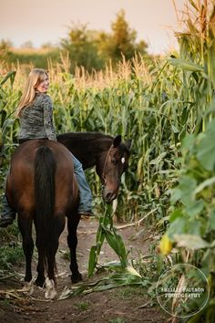 Sarah's Senior Photos with her Horse Ace | Shelley Paulson Photography Blog