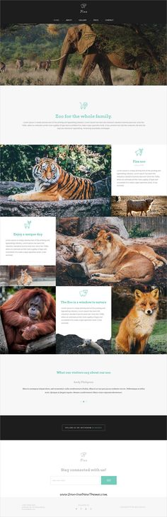 Fixa is clean and modern design responsive WooCommerce WordPress template for  #zoo #website with 21+ niche homepage layouts to live preview & download click on Visit 👆 #animallover #animalkingdom