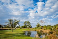 King and Prince Beach and Golf Resort, Where Golf Reigns on St. Simons Island, Ga.   African American Golfer's Digest