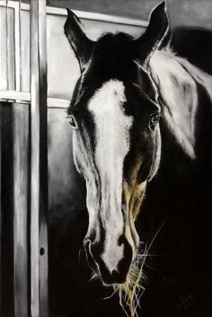 Horses, Painting, Animals, Animales, Animaux, Painting Art, Horse, Paintings, Paint